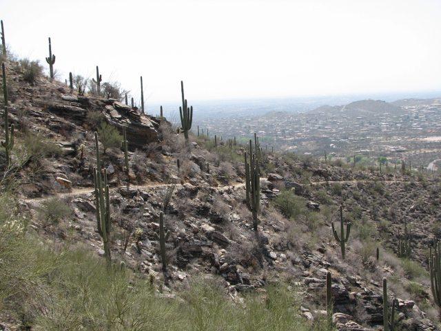 Hiking Sabino Canyon